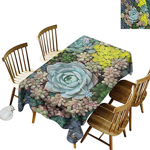 (Waterproof Table Cover Succulent Miniature Plants Stones Modern Minimalist 60