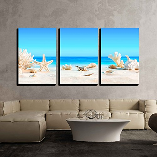 wall26 - 3 Piece Canvas Wall Art - Landscape with Seashells on Tropical Beach Summer Holiday - Modern Home Decor Stretched and Framed Ready to Hang - 24