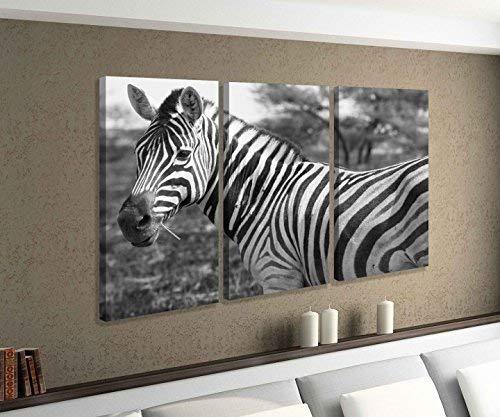 Leinwandbild 3 tlg Zebra Afrika Tier Baum Wüste schwarz weiß Bild Bilder Leinwand Leinwandbilder Holz Wandbild mehrteilig 9W801, 3 tlg BxH 120x80cm (3Stk 40x 80cm)