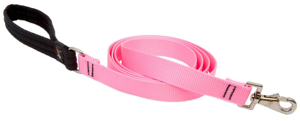LupinePet Basics 1'' Pink 6-Foot Padded Handle Leash for Medium and Larger Dogs