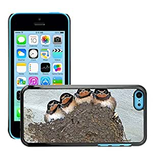Super Stella Slim PC Hard Case Cover Skin Armor Shell Protection // M00106115 Swallows Swallow'S Nest Bird Animal // Apple iPhone 5C