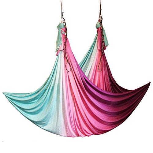(wellsem Aerial Yoga Hammock Aerial Pilates Silk Yoga Swing Set Include Carabiners Daisy Chain, Pose Guide 5.5 Yards Set (Fairy))