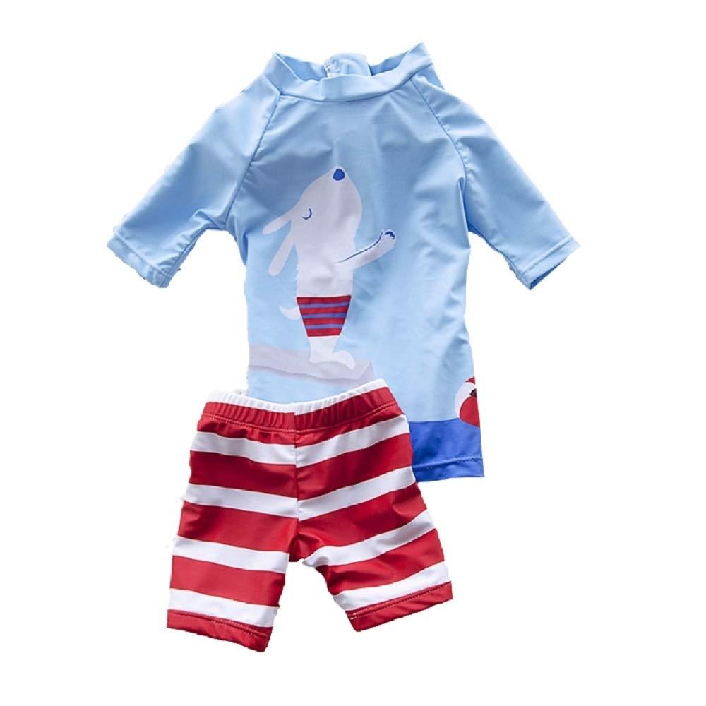 Yunqir Kids Wetsuit 2 Pcs/Set Children's Short Spilt Swimsuits Kids Little Dog Patterns Sunscreen Wetsuit for Water Sports(Sky-Blue)