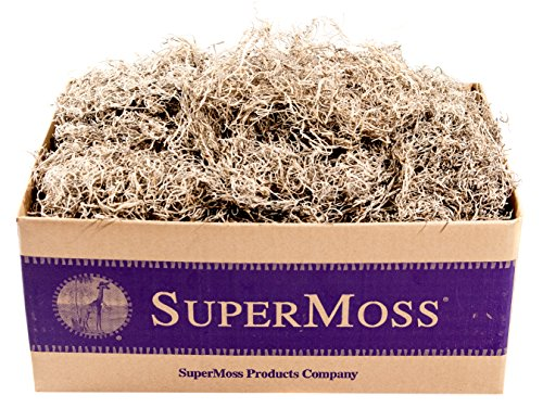 SuperMoss (26926) Spanish Moss Dried, Natural, 3lbs ()