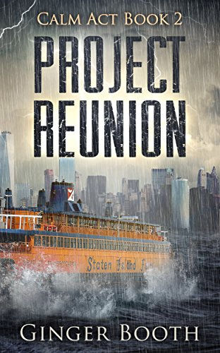 Project Reunion (Calm Act Book 2) by [Booth, Ginger]
