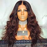 Lace Front Wigs Human Hair 13x6 lace front wig 100% Brazilian Virgin Human Hair Middle Part Chocolate Ombre Color 150% Density for Black Women (18 inch 150% density, lace front wig)