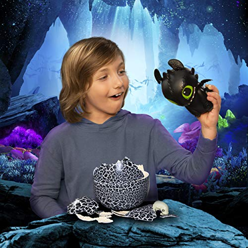 51pxgpdEG4L - Dreamworks Dragons, Hatching Toothless Interactive Baby Dragon with Sounds, for Kids Aged 5 & Up