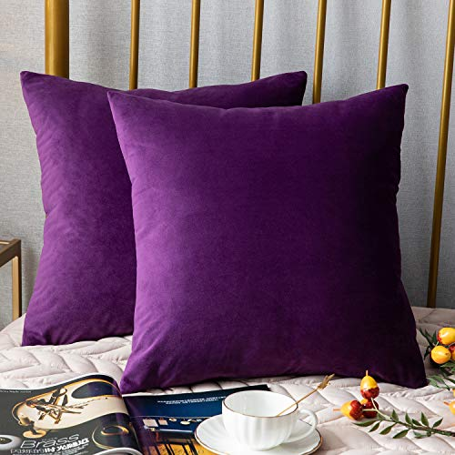 Velvet Pillowcase - DEZENE Decorative Pillow Covers,2 Pack, Solid Soft Velvet Square Throw Pillow Cases,Accent Pillowcases,Euro Cushion Covers for Farmhouse,Couch,Sofa,Kids,Indoor & Outdoor,18 x 18 Inch,Purple