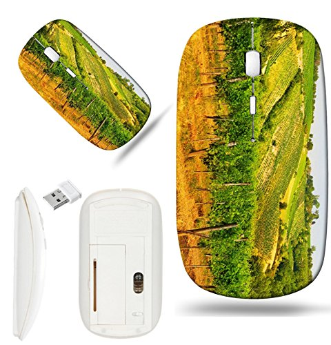 (Luxlady Wireless Mouse White Base Travel 2.4G Wireless Mice with USB Receiver, 1000 DPI for notebook, pc, laptop, macdesign IMAGE ID: 22136824 Viennese green grapes wine yard Vienna Austria)