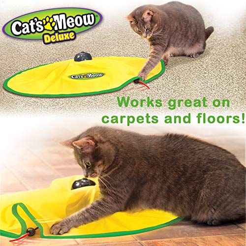 Cat's Meow- Motorized Wand Cat Toy, Automatic 30 Minute Shut Off, 3 Speed Settings, The Toy Your Cat Can't Resist 6