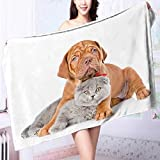 absorbent bath towel Bordeaux puppy dog embracing gray cat isolated on white background Machine washable L39.4 x W19.7 INCH