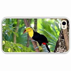 iPhone 4 4S Black Hardshell Case toucan tree branch Transparent Desin Images Protector Back Cover