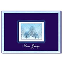 "Christmas Holiday Greeting Card H9005. A Winter scene and a cheerful verse of ""happiness and success"". For personal or business use; silver foil-lined envelopes."