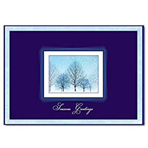 """Christmas Holiday Greeting Card H9005. A Winter scene and a cheerful verse of """"happiness and success"""". For personal or business use; silver foil-lined envelopes."""