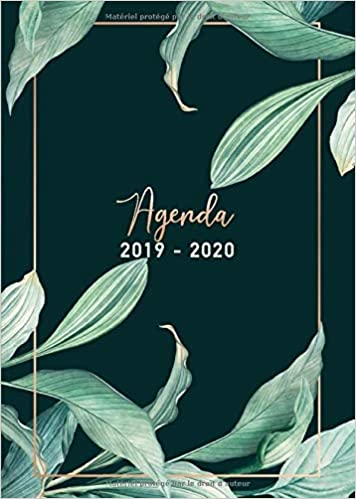 Amazon.com: Agenda 2019/2020: 17 mois journalier 2019-20 ...