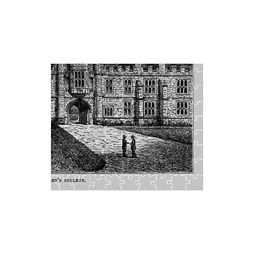 Media Storehouse 252 Piece Puzzle of Queena??s College, Cork, County Cork, Ireland Victorian Engraving (14644485)