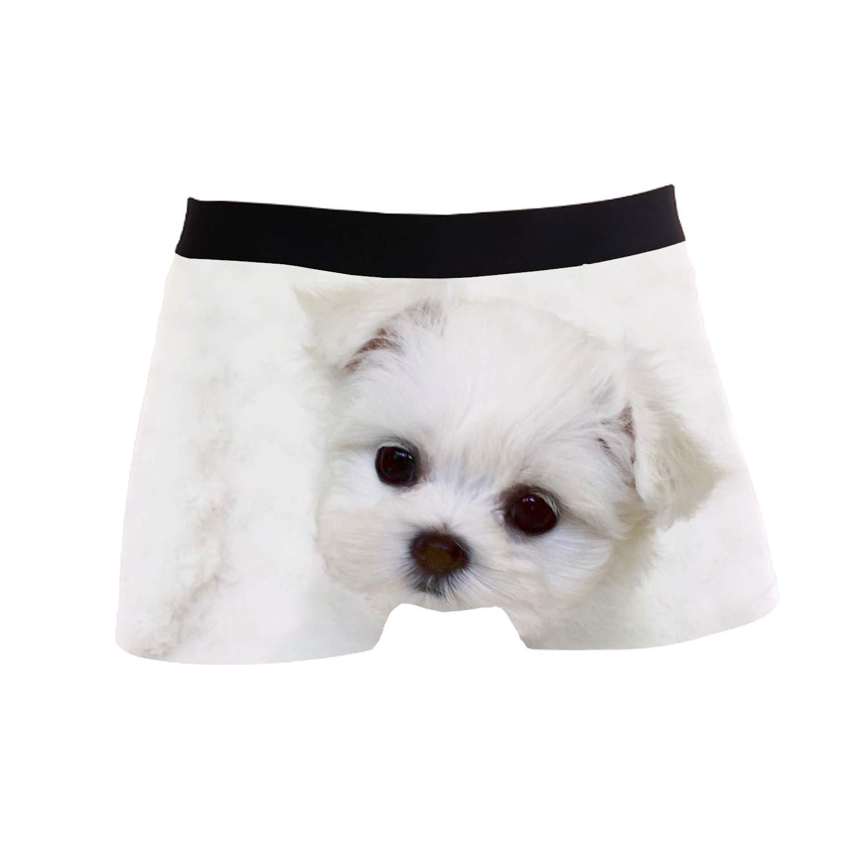 SHRGRGR Mens Underwear Pomeranian Baby Boxer Briefs Short Underpants