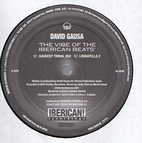 Amazon.com: David Gausa: The Vibe Of The Iberican Beats 12 ...
