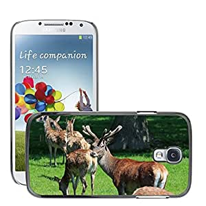 Super Stella Slim PC Hard Case Cover Skin Armor Shell Protection // M00148336 Red Deer Herd Stag Hind Buck Hart // Samsung Galaxy S4 S IV SIV i9500