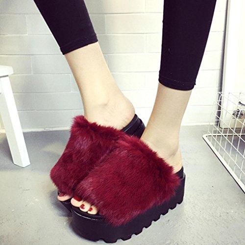DM&Y 2017 muffins de conejo negro zapatillas de piel de fondo grueso punta abierta plana palabra zapatillas wine red