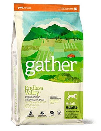 Gather Vegan Dog Food Reviews