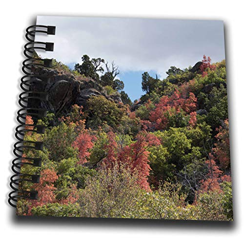3dRose Jos Fauxtographee- Pine Valley Upper Roads - Beautiful Fall Foliage on Trees and Bushes in Upper Pine Valley - Mini Notepad 4 x 4 inch (db_304219_3)