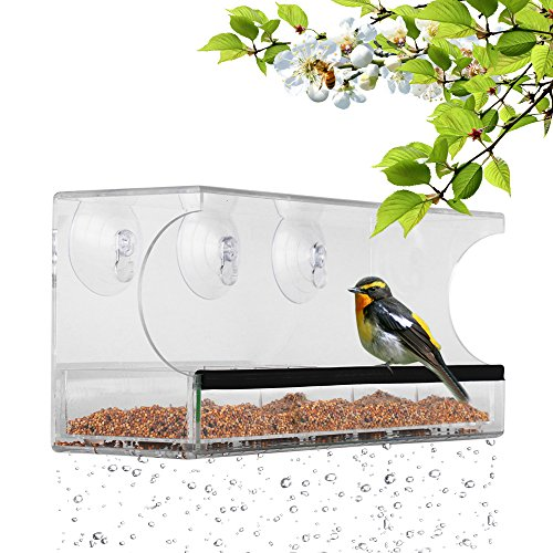 Window Bird Feeder with 3 Super Strong Suction Cups Removabl