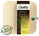 the palm restaurant plates - Leafily Palm Leaf Plates - 6 inch Square - Heavy Duty - Elegant - 100% Compostable - Better than Bamboo or Wood - Disposable - Biodegradable - Premium Party Plates - USDA Certified - 22 Count