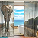 SEULIFE Window Sheer Curtain, Africa African Animal Elephant Voile Curtain Drapes for Door Kitchen Living Room Bedroom 55x78 inches 2 Panels