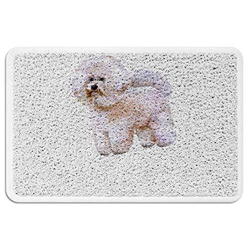 (EZON-CH Doormats for Entrance Way Outdoors Indoor,Cute Bichon Frise Dog All Weather Door Mats for High Traffic Areas Floor Mats with Shoe Scraper,18 x 30 Inch)
