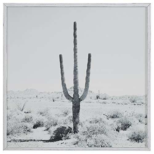 Modern Black and White Desert Cactus Photo on Wood, White Frame, 30'' x 30'' by Stone & Beam