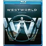 Westworld: La Primera Temporada Completa