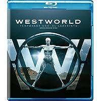 Westworld: La Primera Temporada Completa [Blu-ray]