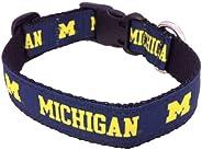 All Star Dogs Michigan Wolverines Collegiate Dog Collar