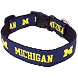 All Star Dogs NCAA Michigan Wolverines Collegiate Dog Collar, Medium
