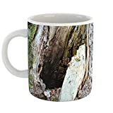 Best BCC Friend And Sisters - Westlake Art - Tree Trunk - 11oz Coffee Review