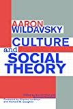 img - for Culture and Social Theory book / textbook / text book