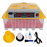 Generic nction Peep D with Alarm ry with Al Hatching Poultry y with A 110V 36 Eggs cuba Function Peep Door matic Incubator Automatic Incubator