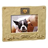 Grasslands Road Rescued Picture Frame, 4 by 6-Inch
