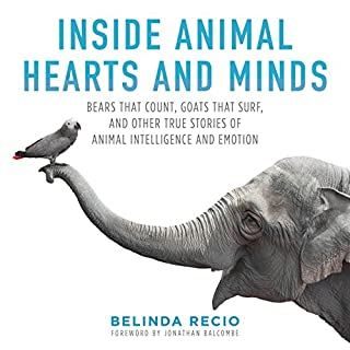 Book Cover: Inside Animal Hearts and Minds: Bears That Count, Goats That Surf, and Other True Stories of Animal Intelligence and Emotion