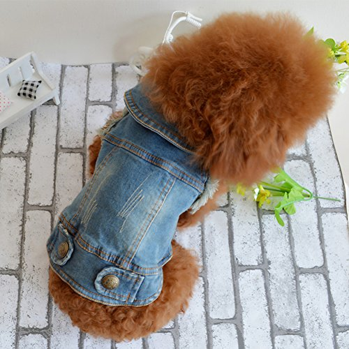 PETCARE Pet Clothes Dog Jeans Jacket Dog Denim Blue Coat Apparel Sweater Or Puppy Clothes Costume (S, Cowboy (Jacket Puppy Costume)