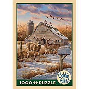 Cobblehill 80106 1000 Pc Rural Route Puzzle Vari