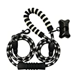 Lumiano Pet- Upgraded 6FT Strong Dog Leash Highly Reflective Dual Comfortable Padded Handles for Medium Large Dogs (Black)