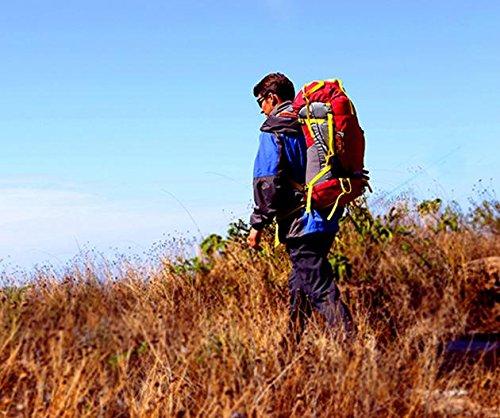 ROBAG Hombres y mujeres de viaje mochila montañismo al aire libre 50 + 5 L bolso morral al aire libre profesional paquete de senderismo , blue red