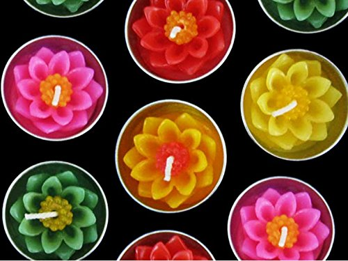 - Studio one Beautiful Lotus Flower Candle in Tea Lights, Floating Candles, Scented Tea Lights, Aromatherapy Relax (Pack of 10 Pcs.)