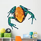 Mantella Frog Wall Decal by Wallmonkeys Peel and Stick Graphic (60 in W x 46 in H) WM279462