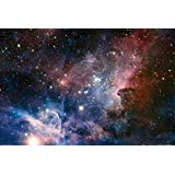 Posters: Space And Universe Poster - The Birth Of New Stars In The Carina Nebula (36 x 24 inches)