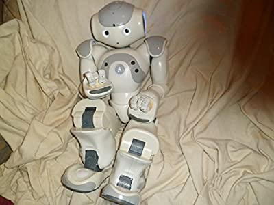 Nao V3.3 Humanoid Robot With A V3.2 Body Programmable And Educational