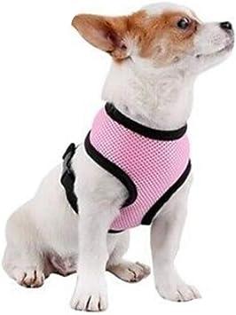 Pet Club Arnés y correa para perro, sin tirones, acolchado ...
