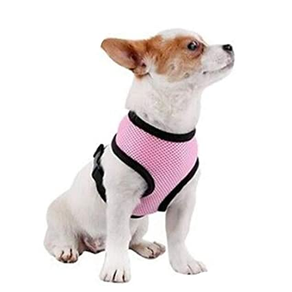 Pet Club No Pull Rabbit/Cat Harness and Leash Set for Walking, Padded No